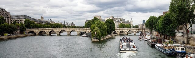 "Pont Neuf (""New Bridge"")"